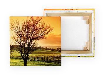Fotos auf leinwand drucken leicht gemacht pixelnet for Kuchenbilder auf leinwand